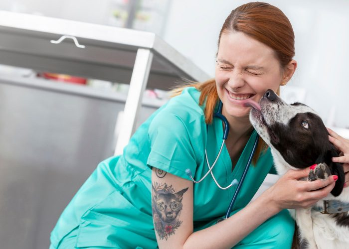 Dog Licking A Nurse With A Tattoo