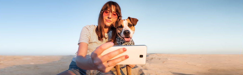 CARE-Canine-Arthritis-Resources-Education-2