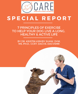 7 principles of exercise special report