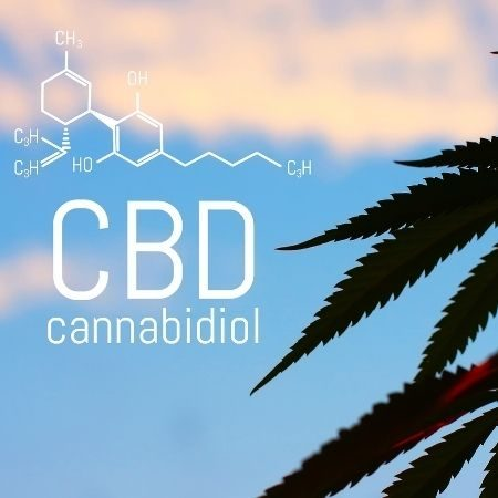 CBD for dogs with arthritis can help with inflammation